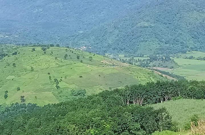 သိန္နီမြို့နယ်အတွင်း ဒေသခံများ၏ လယ်ယာခြံမြေများအား  စစ်ကောင်စီလက်အောက်ခံ လောက်ကိုင်နယ်ခြားစောင့်တပ်များ ဖျက်ဆီးနေဟုဆို